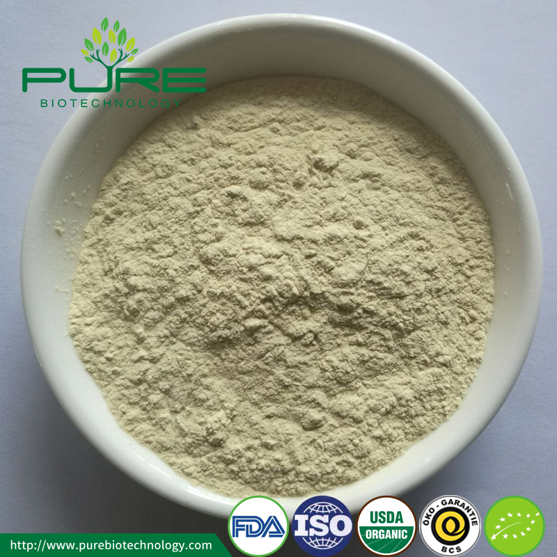 High Quality Organic Ginseng Powder