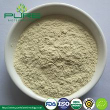 High Quality Organic White Ginseng Powder