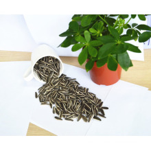 Chinese high quality organic sunflower seeds