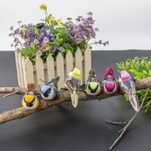 Idées d'artisanat de graines d'oiseaux