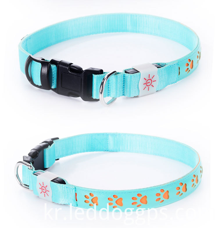 Luminous dog collars