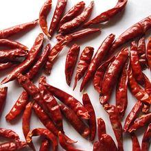 4-7cm Tianying Chili большой поставщик