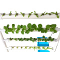 Indoor Single Side Hydroponics Gardening