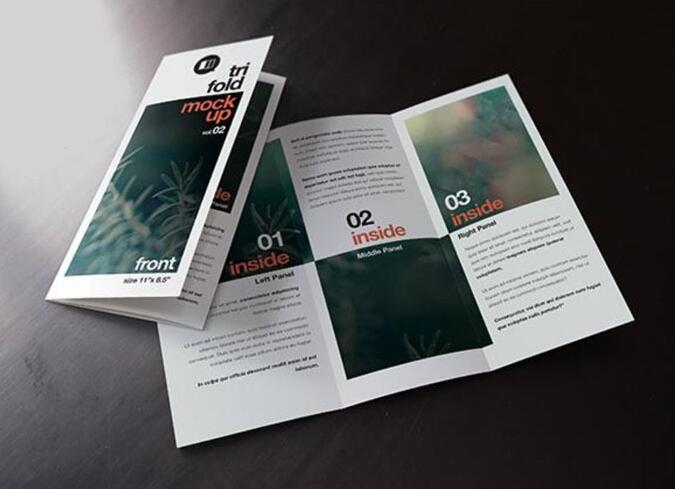 Brochure & manual