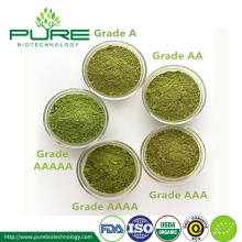 Best price USDA Polvere di tè matcha biologico
