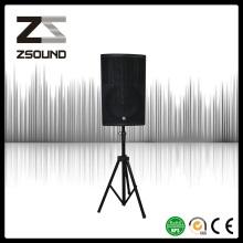 Zsound P15 450W Full Way Système de haut-parleurs de moniteur de gymnase
