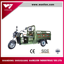 Grande triciclo da carga do CE / CCC que cultiva a E-Motocicleta da bicicleta