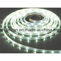 Impermeable SMD2835 8 mm CE aprobado flexible tira de luz LED