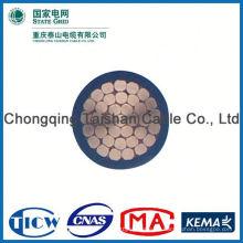 ¡Fuente profesional de la fábrica !! Cable de alta pureza 300 mm de cobre