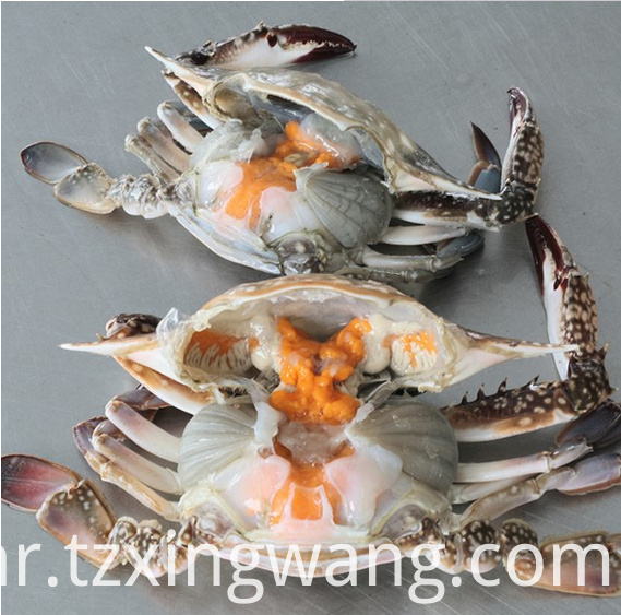 Sea Frozen Cooked Swimming Crab