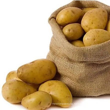 The best Chinese fresh potatoes export vegetable wholesale