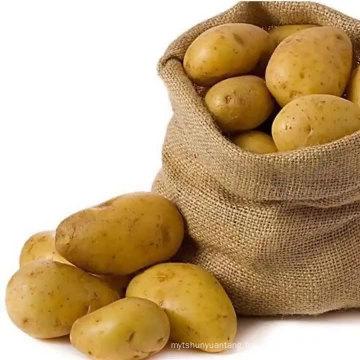 Chinese fresh potato market price wholesale