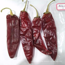 Chinese High Quality DRY RED CHILI/PEPPER With Stem For Sale