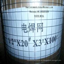 Malla de alambre soldada con autógena / malla de alambre soldada con autógena del acero inoxidable / fábrica de China del fabricante