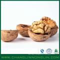 customer like alibaba supplier walnut chile inshell shelled kernels of cheap price