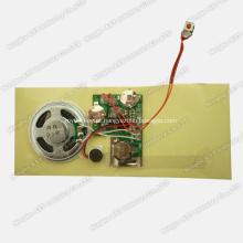 Módulo de Som para Cartões, Chip de Som, Módulo de Voz
