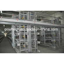 Poul Tech Hot Galvanization Layer Chicken Cage Equipment