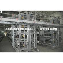 Poul Tech Hot Galvanization Layer Chicken Cage Equipment