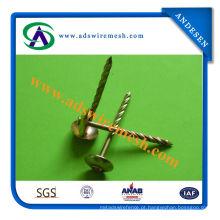 Prego galvanizado da telhadura da bobina (ADS-RN-02)