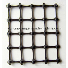 China Market New Design Most Popular Pavement Geogrid for Sale in High Quality