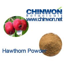Pastelaria Ingredientes Hawthorn Berry Pó