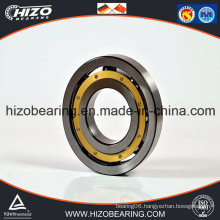 Ball Bearing Strips Deep Groove Ball Bearing (6317/6317-2RS/6317 2Z/6317M)