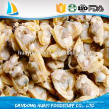 Chinesische gelbe Meer Hochwertige gefrorene gekochte kurze necked Muschel kein Sand