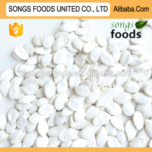 Looking for wholesale pumpkin seeds