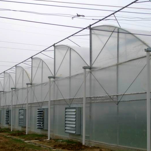 Pertanian Multi Span Film Greenhouse