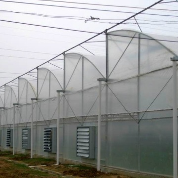 Agricoltura Multi Span Film Greenhouse