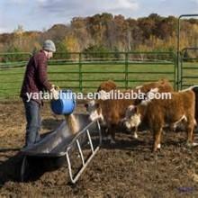 cattle feeds bulk feeds feed additive for animal