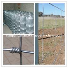 Charnière galvanisée Joint nœud Field Fence