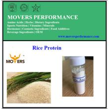 Grosses soldes! Poudre de protéine de riz de grande pureté