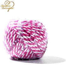 Wholesale Decorative 2 Strand cotton Twisted Cord