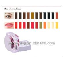 Venda por atacado mais de 22 cores de maquiagem permanente cosméticos para tinta de tatuagem para sobrancelha e lábios e delineador