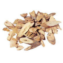 Angelica Root Essential Oil 10ml