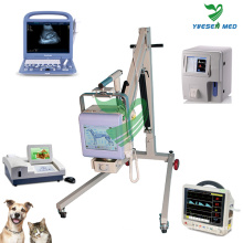 Ysvet Medical Hospital Veterinär Ultraschall-Scanner