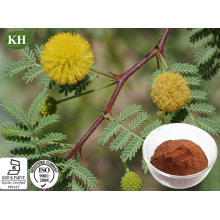 Acacia Catechu Extract Used to Protect Liver and Gall