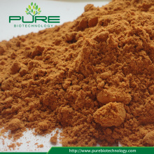 High Quality GMP Freeze mengeringkan goji berry powder