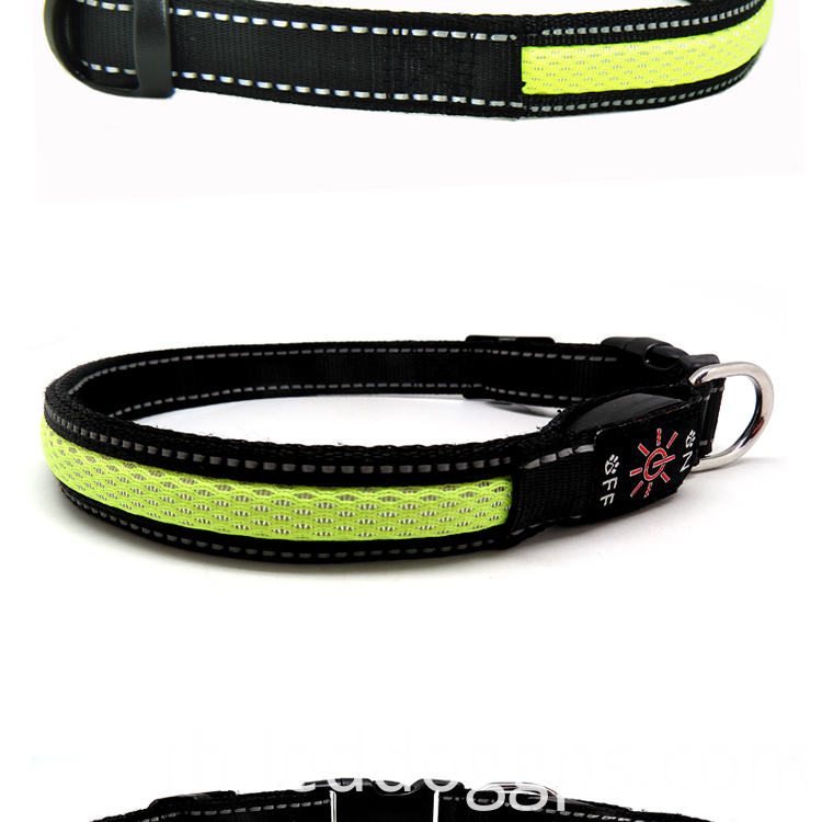 Safety Dog Collar