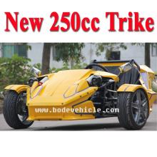 НОВЫЙ фарфор ATV EEC 250CC дрейфовый трик (MC-369)