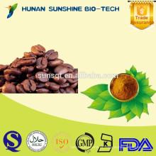 amostra livre sementes naturais puras da árvore de cacau de 100% / pó de cacau para o alimento e o ingrediente da bebida