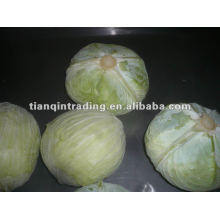2011 Hotsale Chinese Fresh Cabbages