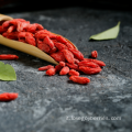 Goji Berry all'ingrosso all'ingrosso da Ningxia 2018
