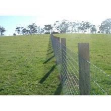 Le meilleur prix a galvanisé les panneaux résistants utilisés de barrière de bétail, barrière de bétail, utilisée