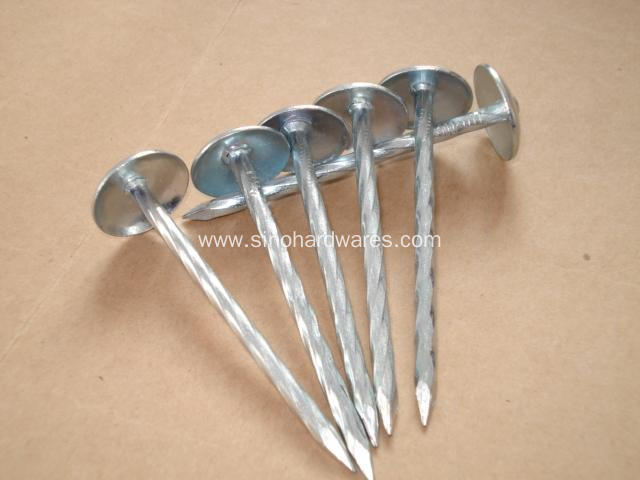 BWG9x2.5 inch Galvanized Roofing Nail