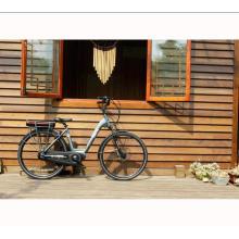 2017 melhor qualidade 8fun mid drive bicicleta elétrica barata, alta potência bicicleta elétrica para venda