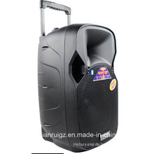 Drahtloser Lautsprecher 12inch Eingebautes Ladegerät Bluetooth mit Energie 50W F87