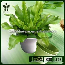 Nuevo diseño planta fibra flor olla