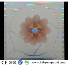 600X600mm PVC Ceiling Panel (BSL-608)
